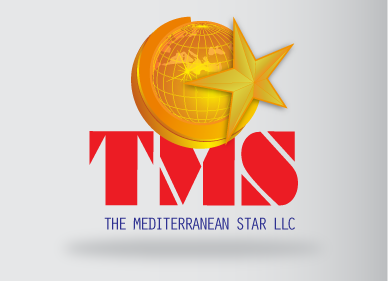 The Mediterranean Star A Logo, Monogram, or Icon  Draft # 113 by Coronel