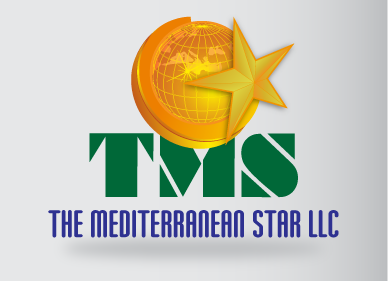 The Mediterranean Star A Logo, Monogram, or Icon  Draft # 115 by Coronel