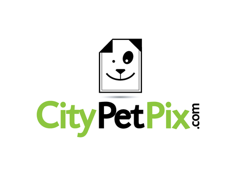 CityPetPix or City Pet Pix (together or separate, whatever looks best)