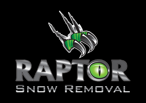 Raptor Snow Removal