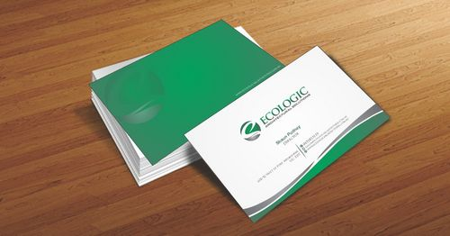 Ecologic Architectural Solutions Business Cards and Stationery  Draft # 91 by Deck86