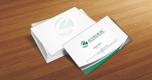 Ecologic Architectural Solutions Business Cards and Stationery  Draft # 88 by Deck86
