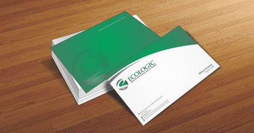 Ecologic Architectural Solutions Business Cards and Stationery  Draft # 95 by Deck86