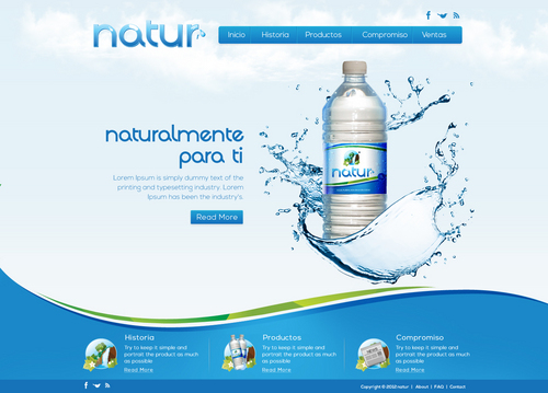 A website for a purified water business in Mexico