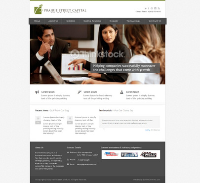 Website Complete Web Design Solution  Draft # 11 by NineCreatives