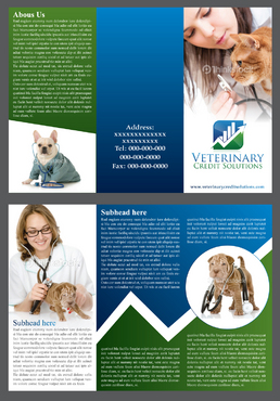 Veterinary Credit Solutions