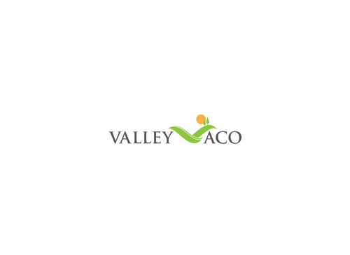 Valley ACO A Logo, Monogram, or Icon  Draft # 88 by PeterZ