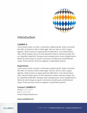 CAMBIO 8 Consultancy and freelance services  Marketing collateral  Draft # 20 by barinix