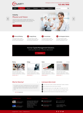 Velarity Complete Web Design Solution  Draft # 142 by exquisitedesign