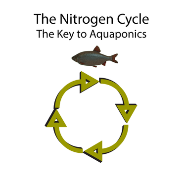 Nitrogen Cycle Other  Draft # 2 by LightStream