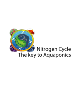 Nitrogen Cycle Other  Draft # 25 by shumail