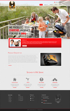 FALCON CHARCOAL Complete Web Design Solution  Draft # 47 by Digilifesolutions