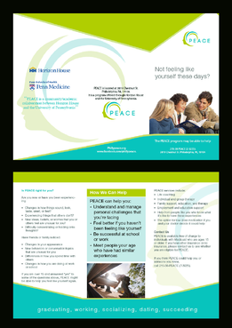 PEACE program services Marketing collateral  Draft # 15 by ramazi