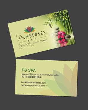 spa graphics Marketing collateral  Draft # 13 by destudio