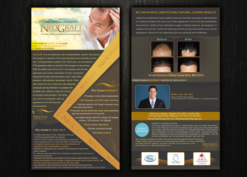 Premier Plastic Surgery & Dermatology Marketing collateral  Draft # 29 by Noaza