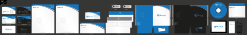 Stellar Aviation Business Cards and Stationery Winning Design by einsanimation