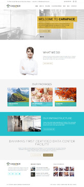 Carapace Website Complete Web Design Solution  Draft # 44 by NineCreatives