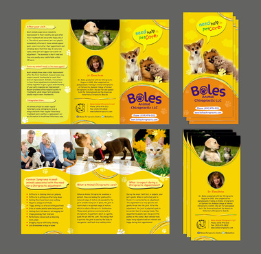 Animal Chiropractic Marketing collateral  Draft # 72 by bavas