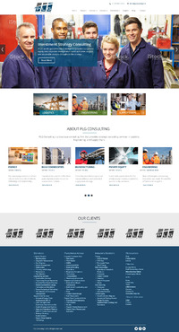 New Website for Consulting company Complete Web Design Solution  Draft # 109 by OnlyQuality