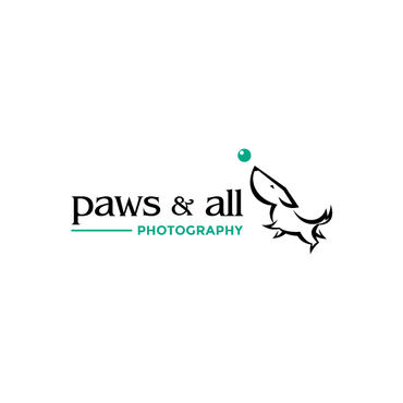 Paws and All Photography
