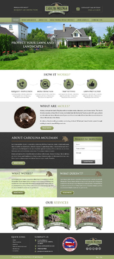 carolina moleman Complete Web Design Solution Winning Design by FuturisticDesign