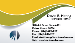 Blockweather Holdings, LLC Business Cards and Stationery  Draft # 245 by khanBD
