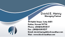 Blockweather Holdings, LLC Business Cards and Stationery  Draft # 246 by khanBD
