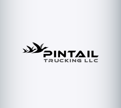 Pintail Trucking LLC A Logo, Monogram, or Icon  Draft # 193 by B4BEST