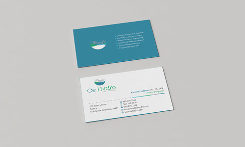 Water Resources, flooding, engineering, hurricanes, rain, flood control structures Business Cards and Stationery  Draft # 169 by Xpert