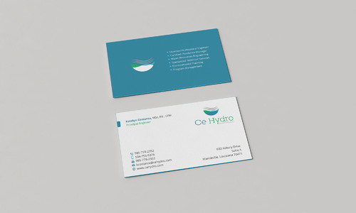 Water Resources, flooding, engineering, hurricanes, rain, flood control structures Business Cards and Stationery  Draft # 171 by Xpert
