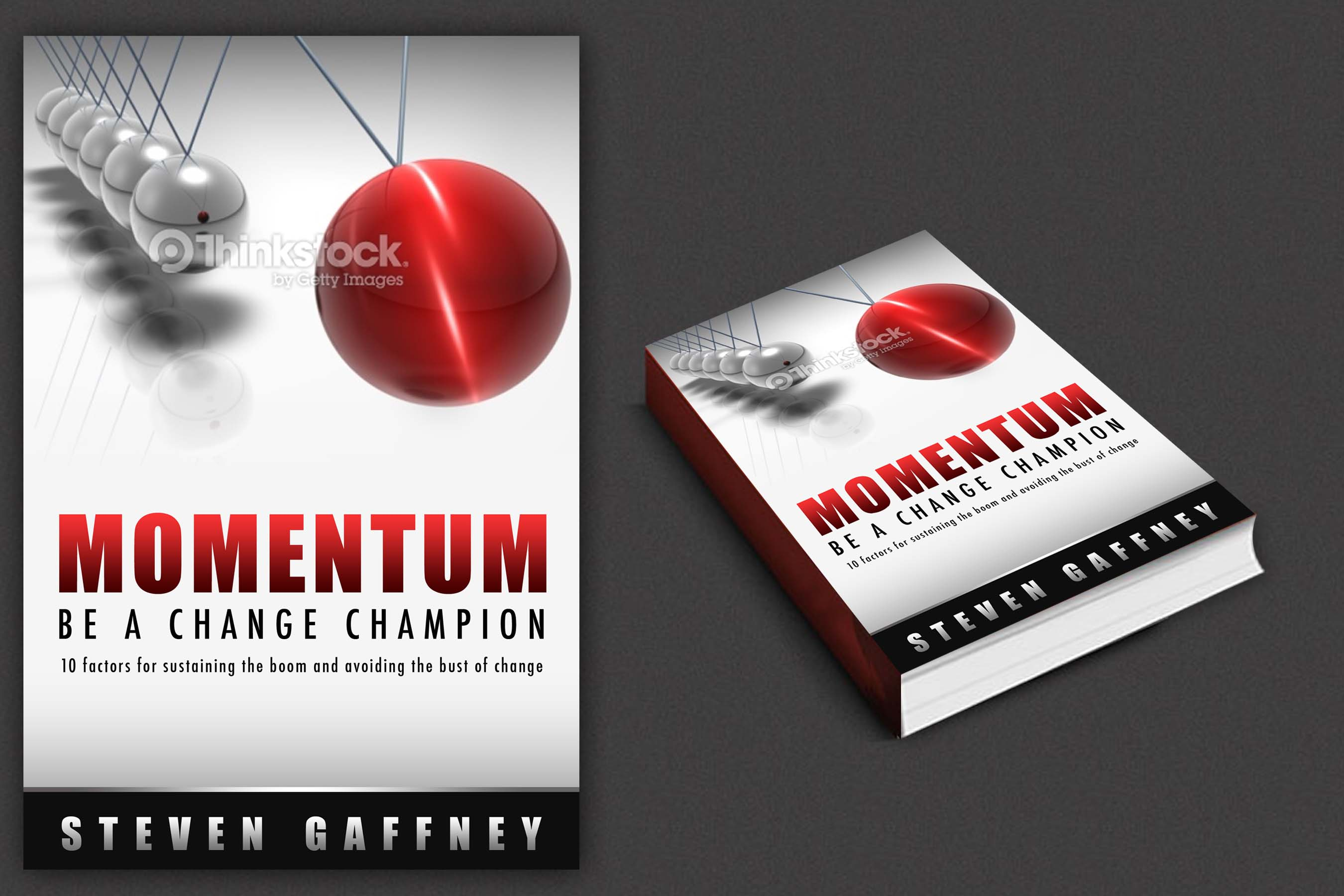 Book Cover for Steven Gaffney - Consulting