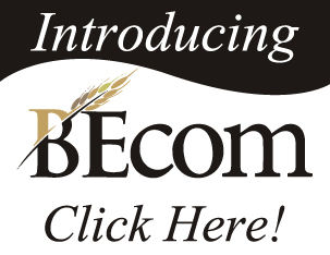 BEcom Ad - Advertising