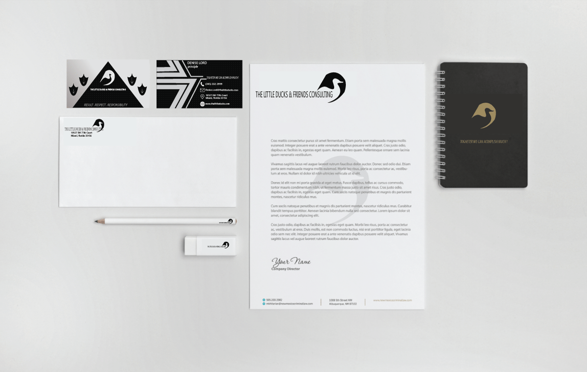 Logo/full stationary package for consulting firm using a duck outline modern art style in BLACK  - Consulting